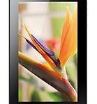 لوازم جانبی تبلت Huawei MediaPad 7 Vogue