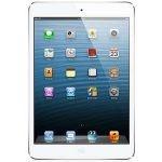 لوازم جانبی اپل آیپد Apple iPad 2/3/4