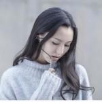 هندزفری شیائومی وان مور Xiaomi 1More Design Mi Pro HD